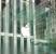 أبّل قد تفتتح 3 متاجر رسمية لها في الإمارات قريباً جداً